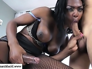 Shemale ebony amateur getting sucked from lucky guy