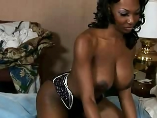 Hot Ebony Shemale fuck guy